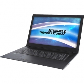 Thunderstorm 15CL871 GTX1050Ti SSD+HDD